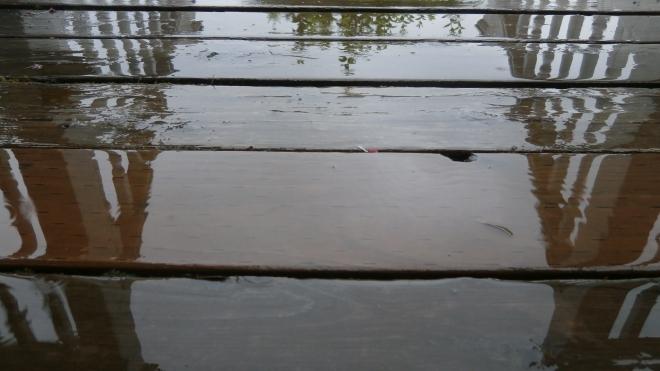 Rain 8-30-14 (c) Steamguy